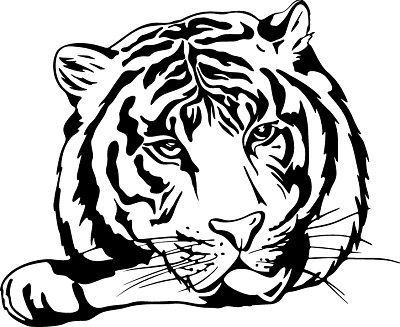 Dessin De Tigre Tribal